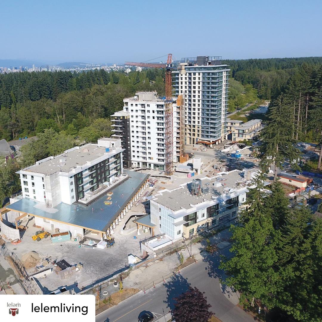 A drone shot of @lelemliving on a clear day!